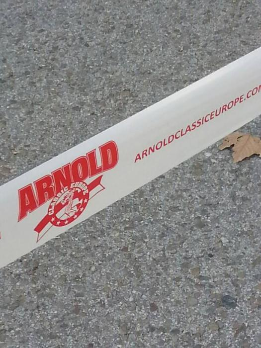 2015 Arnold Classic Europe, play by play by underbody