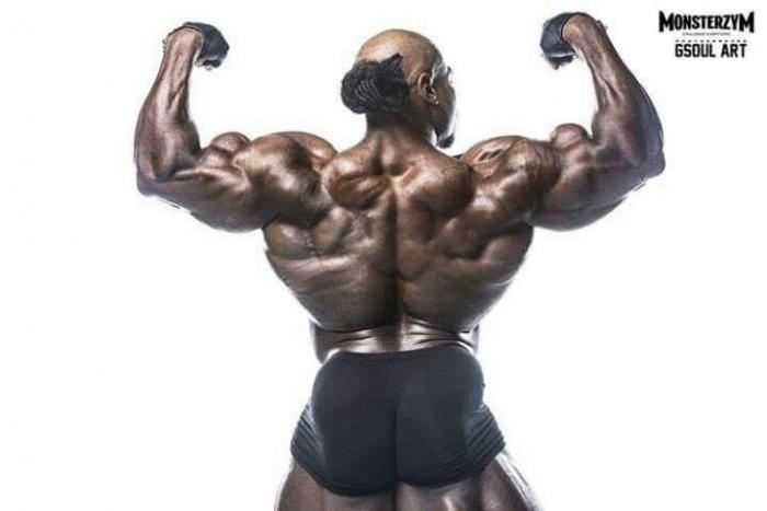 muscle building steroids for beginners
