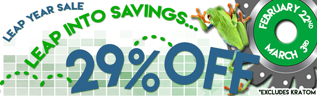 Leap Year SALE! 29% Off EVERYTHING!