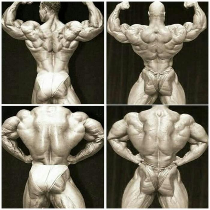 Virtual Bodybuilder Posedown - Muscle Combat