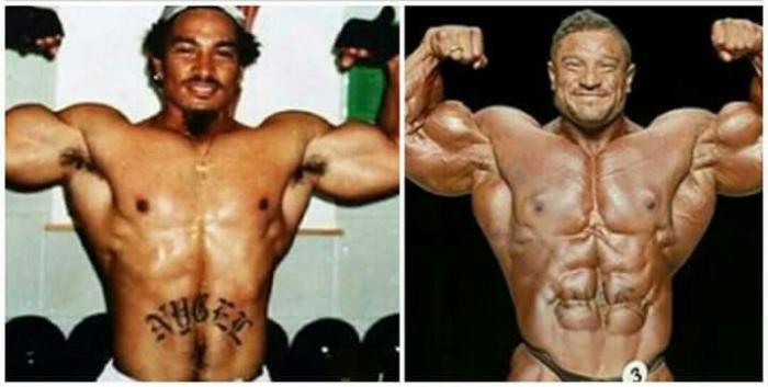 Pro IFBB Evolution