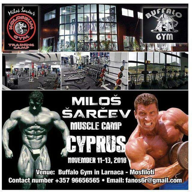 Milos sarcev's seminar