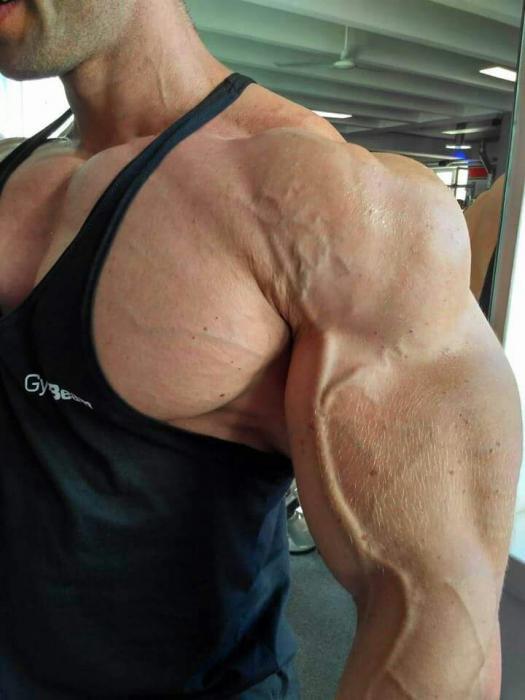 Peter Molnar